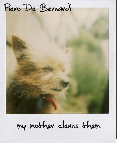 my_mother_cleans_them.jpg