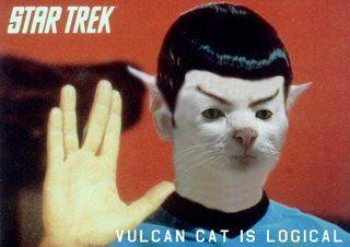 vulcan-cat-is-logical.jpg