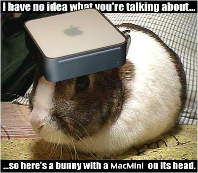 MacBunny.jpg