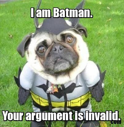 i_am_batman_pug.jpg