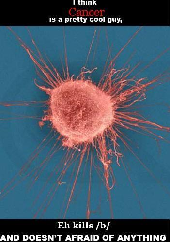 Coolguycancer.jpg