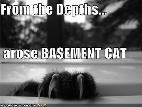 basement-cat-depths.jpg