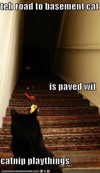 the-road-to-basement-catnip-playthings1.jpg