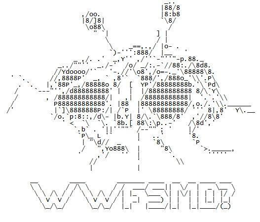 FSM_in_ASCII_by_dan551x.jpg
