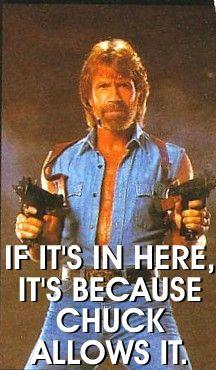 Chuck_Norris_Facts__by_me__by_c_force.jpg