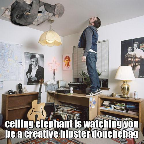 ceiling-elephant-24801-1250282126-5.jpg