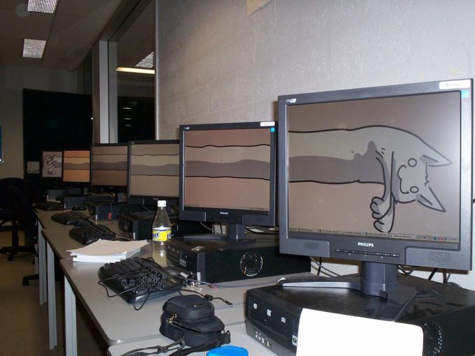 longcat-monitors.jpg