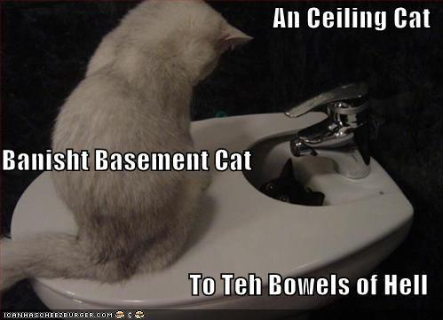 funny-pictures-ceiling-cat-banished-basement-cat-bowels-hell.jpg