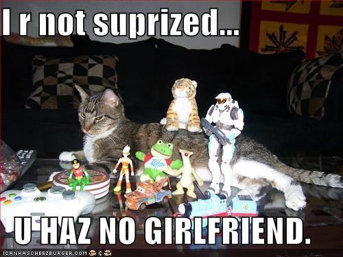 funny-picture-lolcats-u-haz-no-girlfriend.jpg