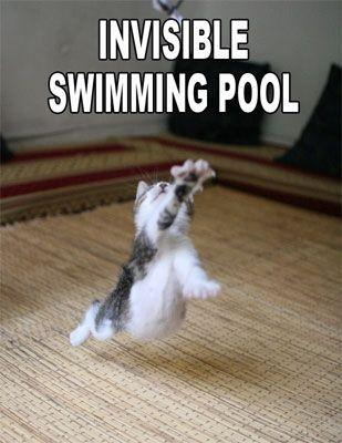 Invisible-swimming-pool.jpg