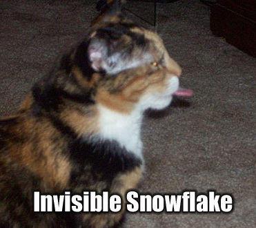 invisiblesnowflake.jpg