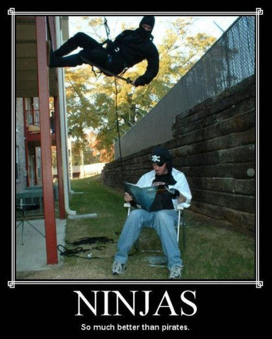ninjas_better_than_pirates.jpg