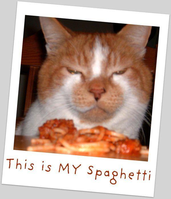 My_Spaghetti_by_Kaeljia.jpg