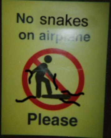 no_snakes__please_by_StephieSama.jpg