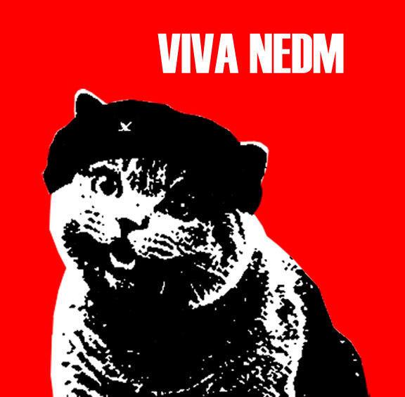Viva_NEDM_by_PatAmo19.jpg