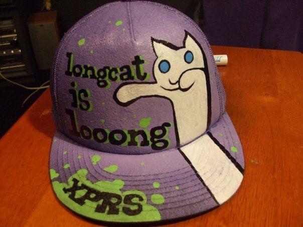 Longcat_is_looooooooooooong_by_JimmyNotHendrix.jpg