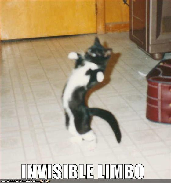 INVISIBLE_LIMBO____ichc__by_unlucky13akadnl.jpg