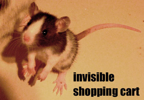 Invisible_Shopping_Cart_by_LOL_Cat.jpg