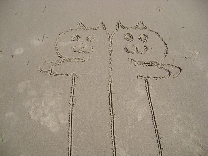 longcat-tacgnol-beach.jpg