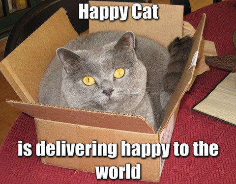 Deliverhappy.jpg