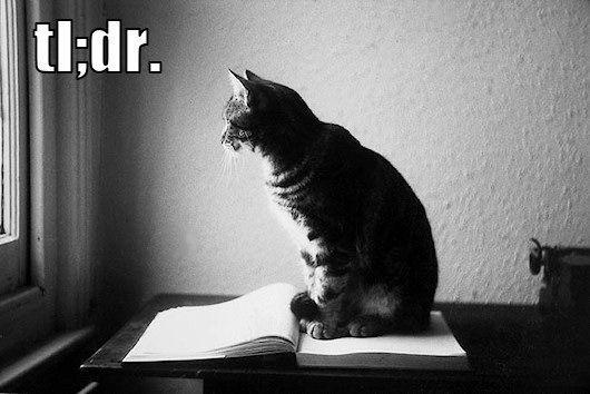 tldr_trollcat.jpg