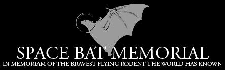 space-bat-helmet-60020110724-22047-a0r17h.png