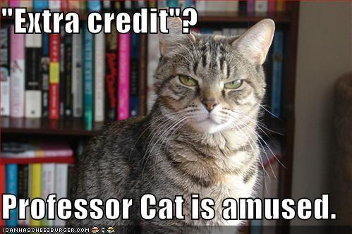 extra-credit-cat.jpg