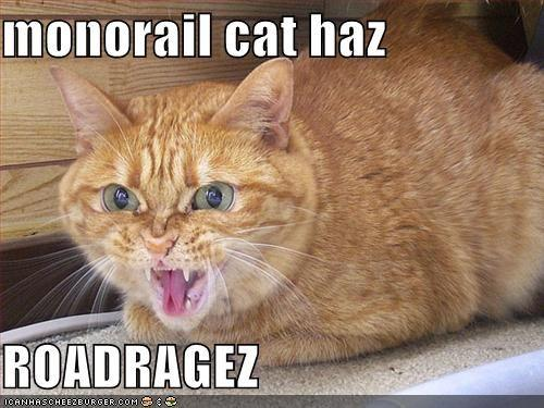 funny-pictures-monorail-cat-has-roadrage.jpg