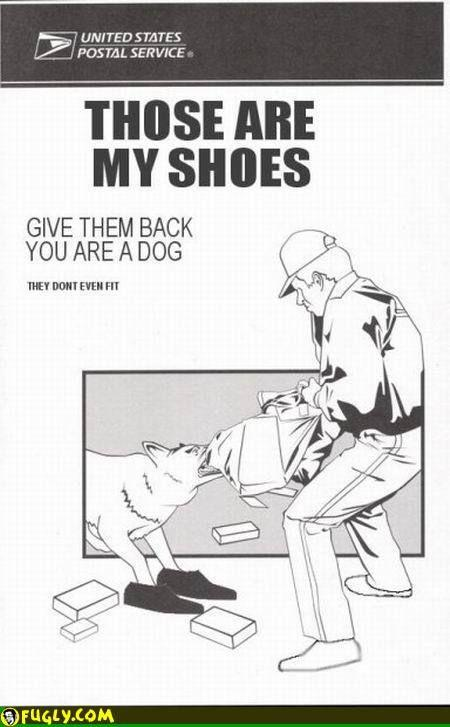 give-me-back-my-shoes-youre-a-dog-give-them-back.jpg