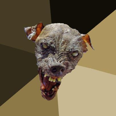 Ugly_Dog_Background.jpg