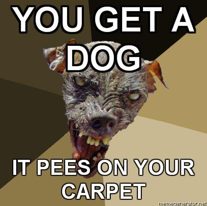 Ugly-Dog-YOU-GET-A-DOG-IT-PEES-ON-YOUR-CARPET.jpg