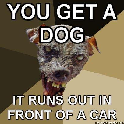 Ugly-Dog-YOU-GET-A-DOG-IT-RUNS-OUT-IN-FRONT-OF-A-CAR.jpg