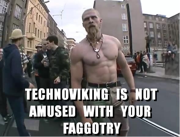 Technoviking_Faggotry.jpg