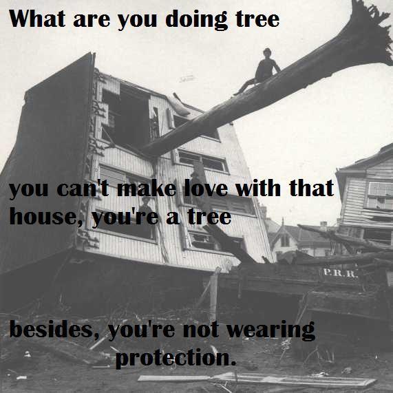 house_tree_buzzkill.jpg