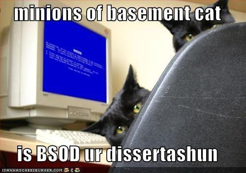 funny-pictures-basement-cats-bluescreen.jpg