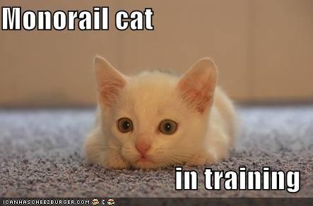 lolcats_monorail-cat-training.jpg