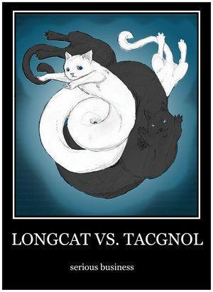 LONGCAT_VS__TACGNOL_by_ReivanRyles.jpg