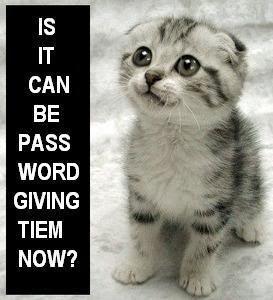 IS_IT_CAN_BE_HUGS_TIEM_NOW_PLEES_CA.jpg