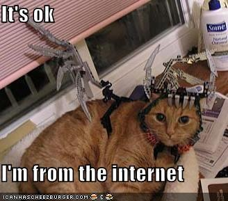 funny-pictures-cat-from-the-internet.jpg