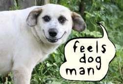feels_dog_man.jpg