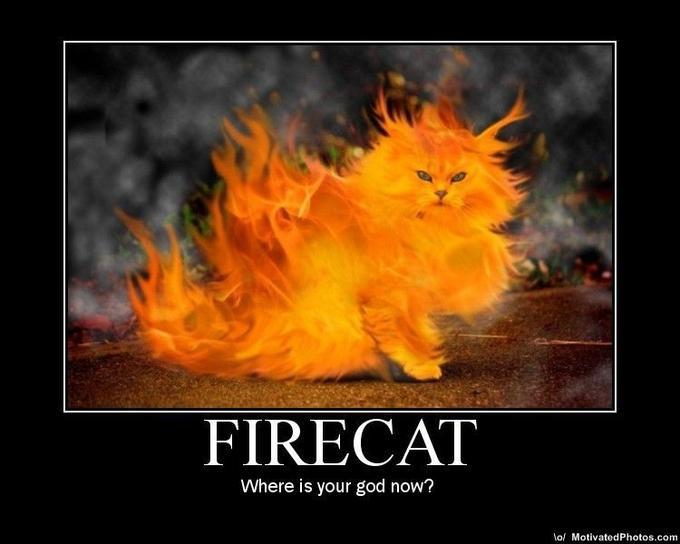 633508728299863736-firecat.jpg
