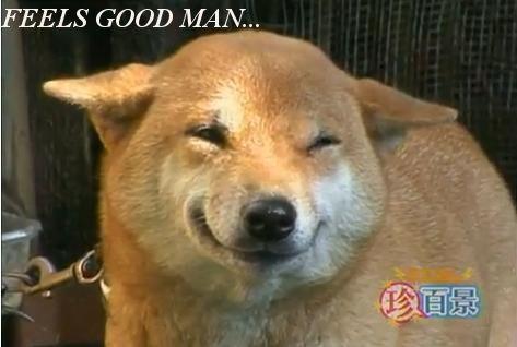 Feels_Good_Man_Dog.JPG