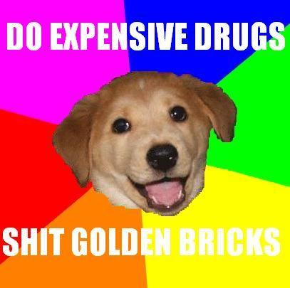 Advice_Dog_Golden_Bricks.jpg