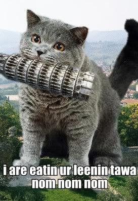 cheezburger-cat.jpg