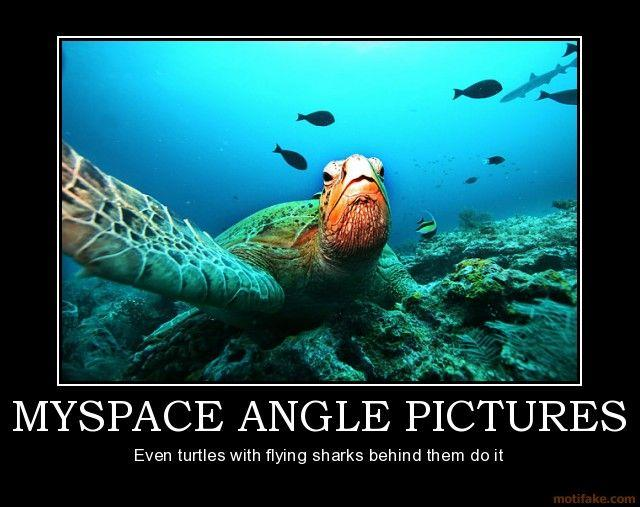 myspace-angle-pictures-myspace-angle-pictures-turtle-shark-demotivational-poster-1216001091.jpg