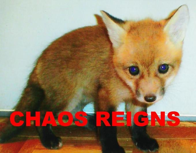 chaos_20reigns_201.jpg