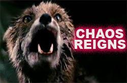 chaos_reigns_fox.jpg