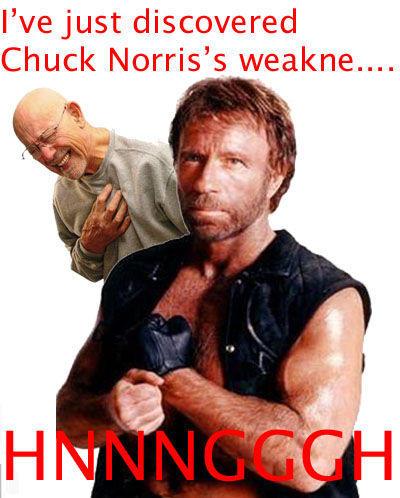 CHUCK_NORRIS_copy.jpg