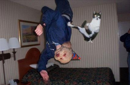 karate-kat-with-the-birthday-dog-3892-1268367443-17.jpg