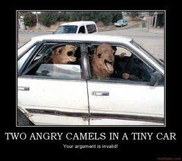 two-angry-camels-in-a-tiny-car-two-angry-camels-in-a-tiny-ca-demotivational-poster-1265390697.jpg